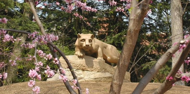 lion in spring