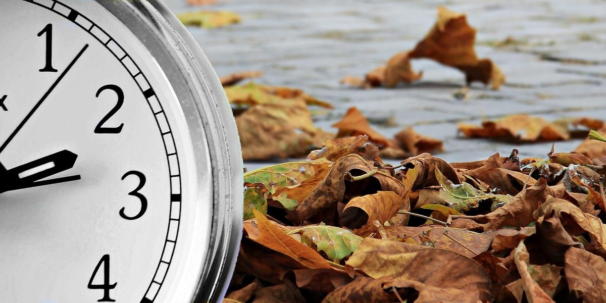 fall leaves with clock